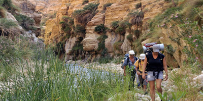 Tours in Jordan: Hiking in the canyons near the Dead Sea