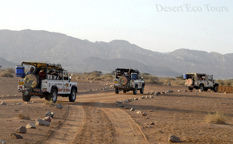 Jeep tours from Eilat