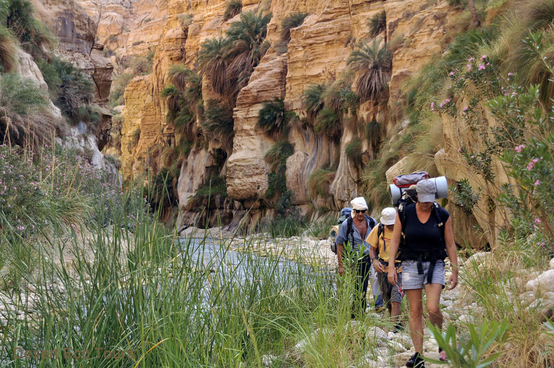 Hiking and trekking tours in Jordan