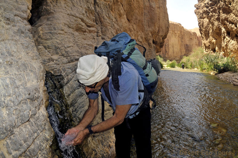 Hiking & trekking tours in Jordan