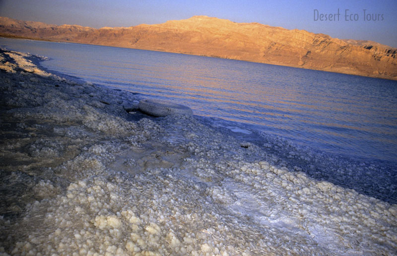 Dead Sea tour from Eilat or Jerusalem