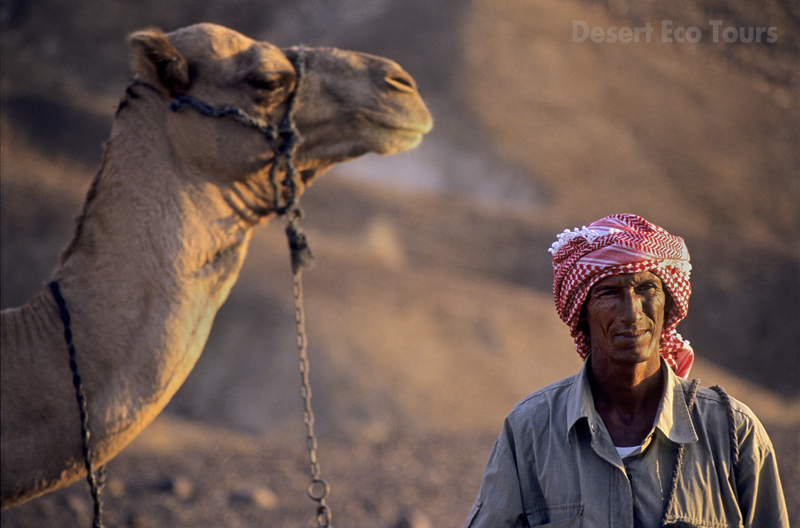Bedouins on the Negev desert, Israel
