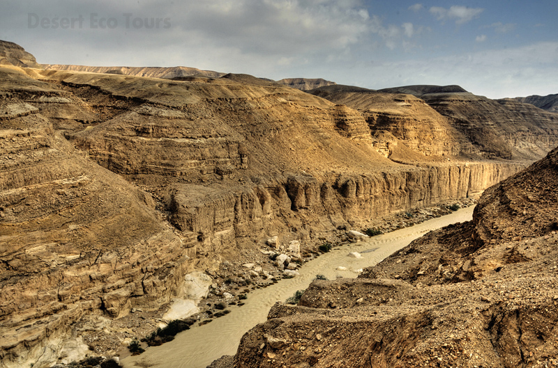 Tours to Wadi Zin- Mitzpe Ramon