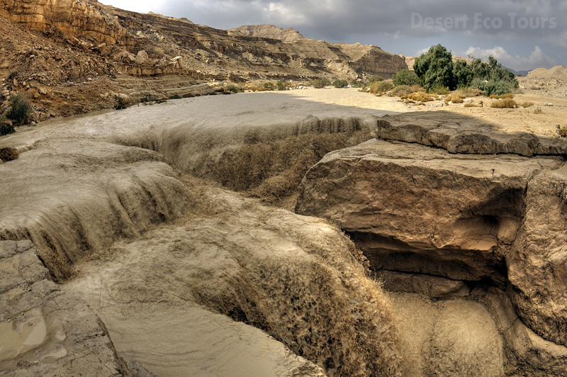 Flood in Wadi Zin- the Negev Desert