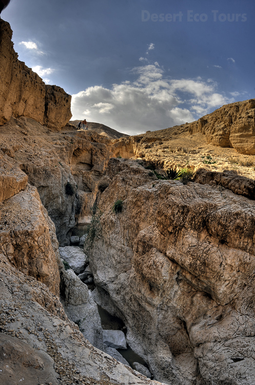 Hiking tours in the Negev desert, Israel