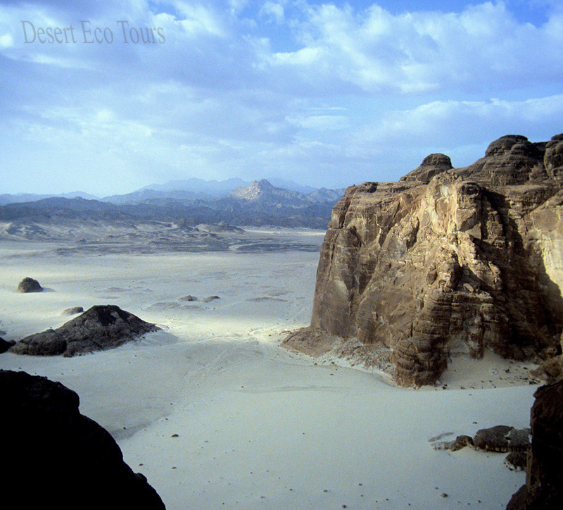 Tours to the Sinai desert